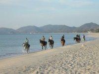 Equestrian excursions