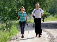 Nordic walking tours