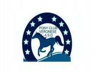 Pony Club Veronese