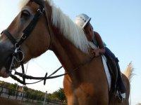 L'amore per i cavalli