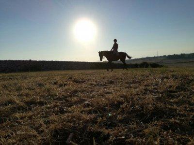 Cavalli & Cavalieri Asd Trekking