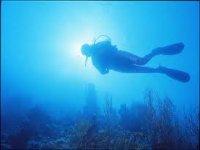 Corsi diving a Biella