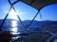 Experience the sea with us