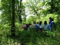 Attivita per bambini nella natura