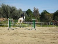 Stage di equitazione