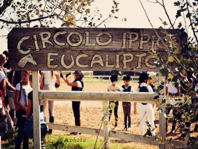 Eucalipto Green Club
