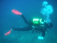 Diving in Calabria