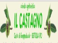 Azienda agrituristica Il Castagno