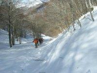 Scialpinismo con guide