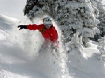 VivaLaVita Snowboard