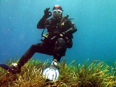 Scuola Subacquea Top Diving