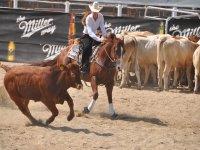 in sella al rodeo