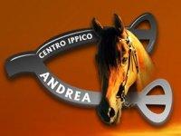 Centro Ippico Andrea