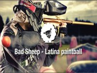 Bad Sheep - Latina Paintball
