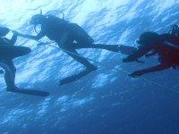 Immersione in acque libere