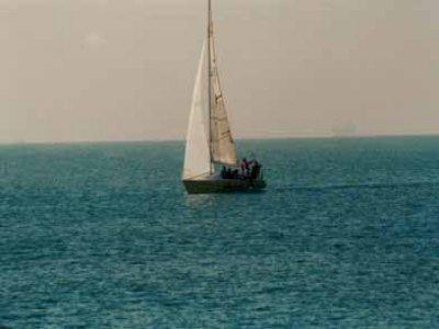 Pettirosso Sail Noleggio Barche