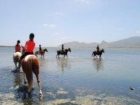 Trekking a Cavallo alla Laguna