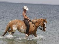 Emozioni a cavallo