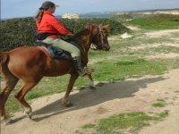 passeggiatina a cavallo