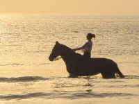 Horse riding in the water