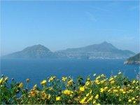 Ischia from Procida
