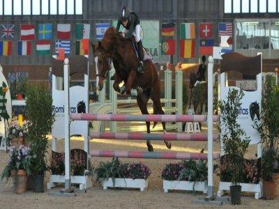 Associazione Dilettantistica Equestre Roccabruna ASD