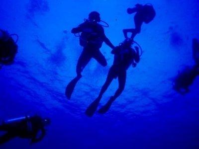 Roan Diving School