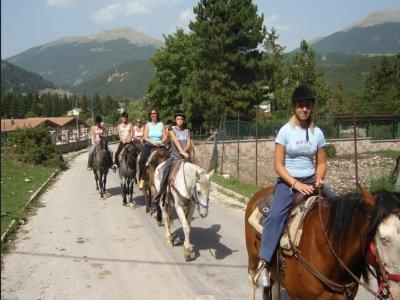 Centro Ippico Vallecupa Passeggiate a Cavallo