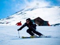 Parallel skiing descent