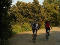 Escursioni in bici per team building