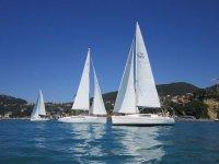 Flottiglie