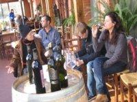 Assaporando vini e liquori