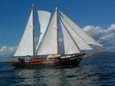 Isla Negra II Escursione in Barca