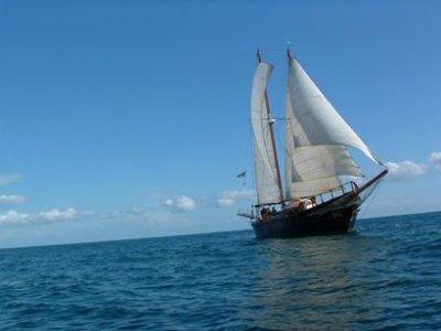 Isla Negra II
