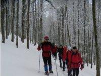 Fra boschi e neve
