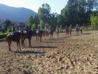 Cavalli e ranch