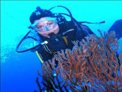 Nettuno Dive School
