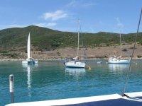 Vela in Sardegna