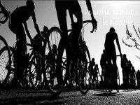 Noleggio Mountain bike e bici da corsa