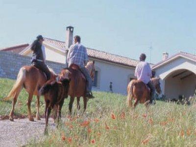 Azienda agrituristica Carrera della Regina Passeggiate a Cavallo