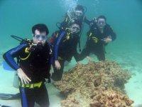 Grupo di participanti breathing sott'acqua calmly