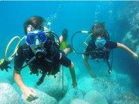 diving diver