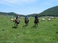 I trekking a cavallo dellaValle del Rio