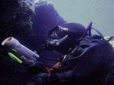 Donzella Diving