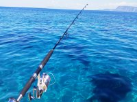 Fishing in mare