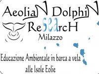 Aeolian Dolphin Research
