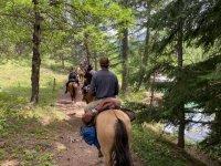 a cavallo in riva al fiume