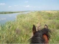 soggettiva a cavallo