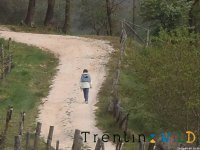 Discover Trento on foot