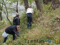Discover nature with trekking in Trentino